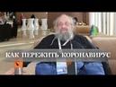Анатолий Вассерман - Как пережить коронавирус