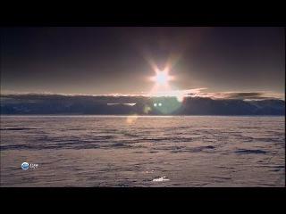 Арктическая экспедиция Властители Арктики