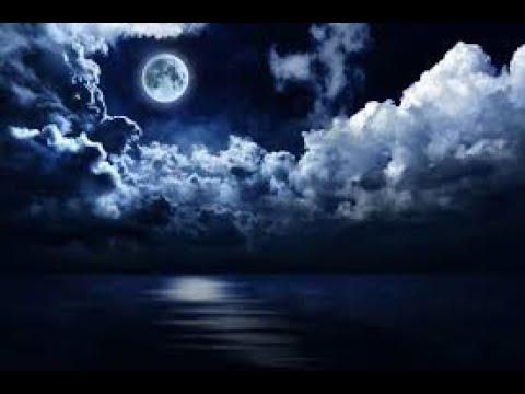 33 Расследование Астероид Луна Чистка элит Карантин Матка и немного истории