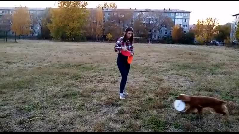 Пилипенко Виктория и РОС Мия, 4 задание средние