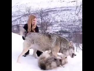 Девушка с добрым сердцем, зверей не обманешь🔥