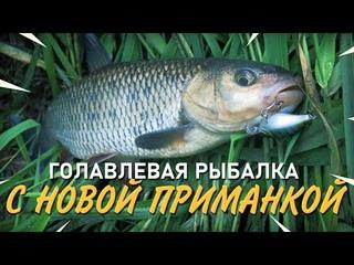 Голавлевая рыбалка с новой приманкой. Тестирую воблер на малой реке