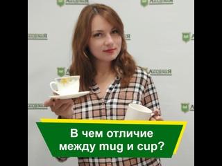 В чем отличие между mug и cup