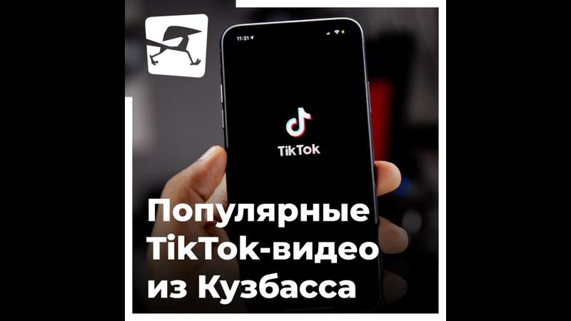 Еноты, дальнобойщики, шансонье: популярные TikTok-видео из Кузбасса