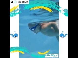 Video by Аква клуб «Little Life»