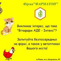 АнастасіяФарматон