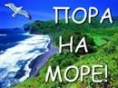 Фотоальбом Динары Еговцевой
