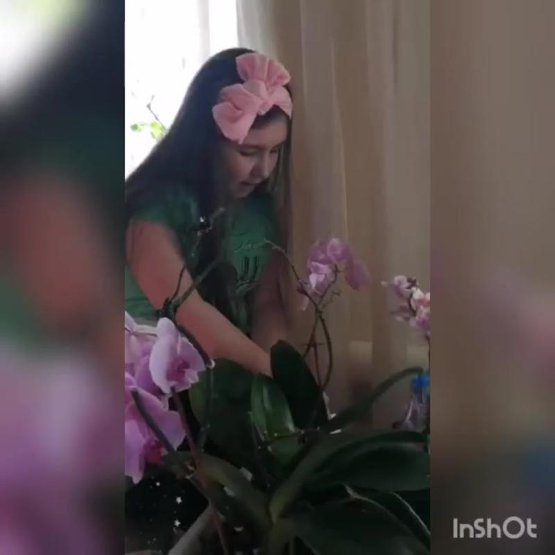 Видео от ОТДЕЛЕНИЕ ГБУ РРЦ В БУЗДЯКСКОМ РАЙОНЕ