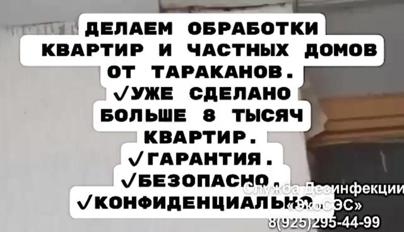 Уничтожение тараканов в Москве и Московской области