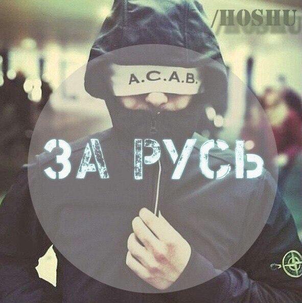 фото из альбома Влада Волохова №9