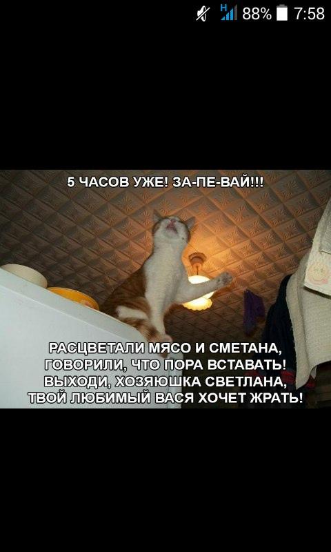 фото из альбома Вероники Захаровой №2