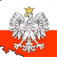 АртемКотов