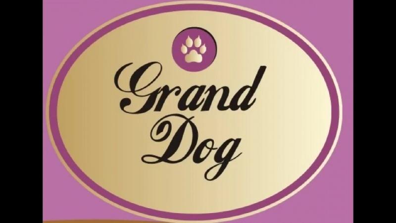Сухой корм для собак супер премиум класса Сенсетив от Grand Dog