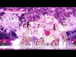 PRODUCE 48 [48 Special] 다시 만나 ×2 speed challenge | Concept Evolution 180824 EP. 11 (produce48)