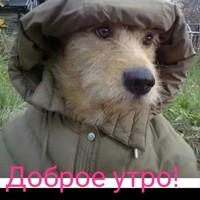 Иванов Кирилл