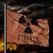 Флаг S.T.A.L.K.E.R. диз.№2