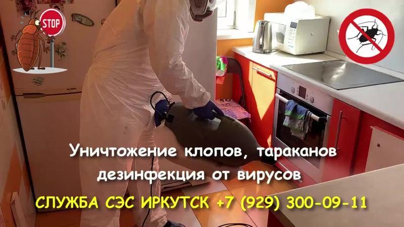 Служба СЭС Иркутск. Уничтожение клопов, тараканов