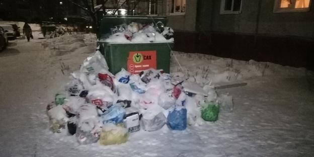 Мусор из контейнеров на ул. Солнечной, 31 впервые вывезли только в ночь с 10 на 11 января