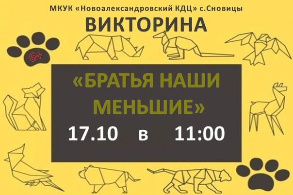 16 октября в 11:00 - викторина о домашних животных...