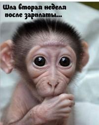 Самойлова Анна