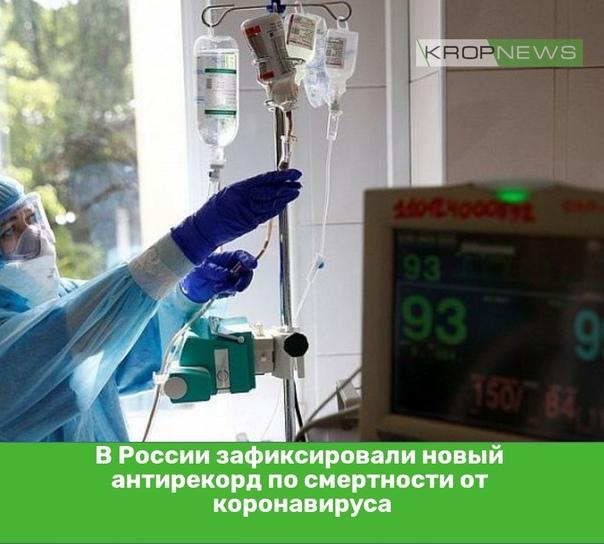 В России зафиксировали новый антирекорд по смертности от ...
