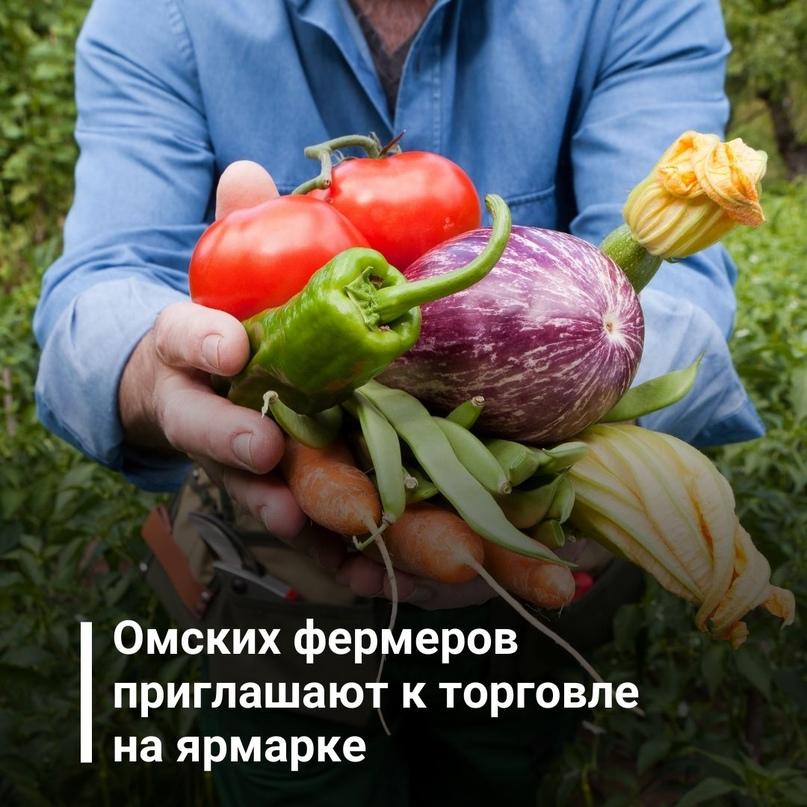 Омских сельхозтоваропроизводителей приглашают к торговле на ярмарке