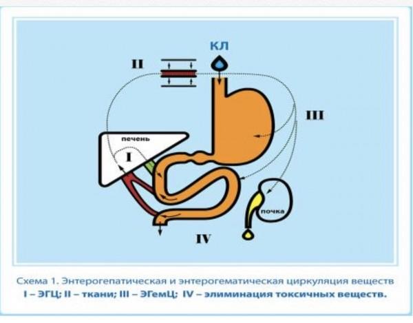 Пищевое отравление Челябинск