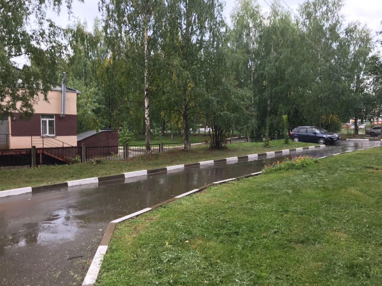 Улица Московская дом 165 кошение травы