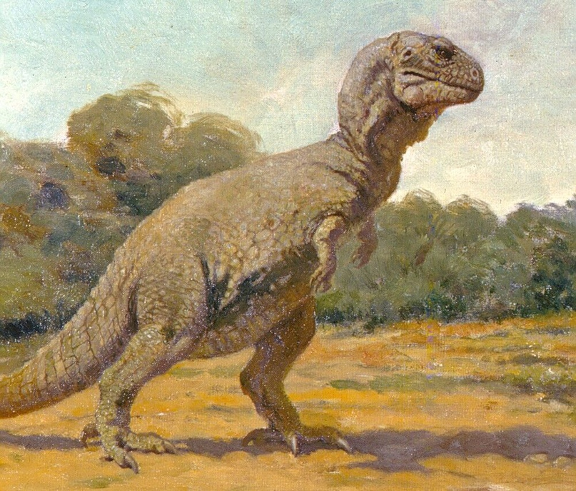 Изображение тираннозавра (Charles Кnight, 1906 год)