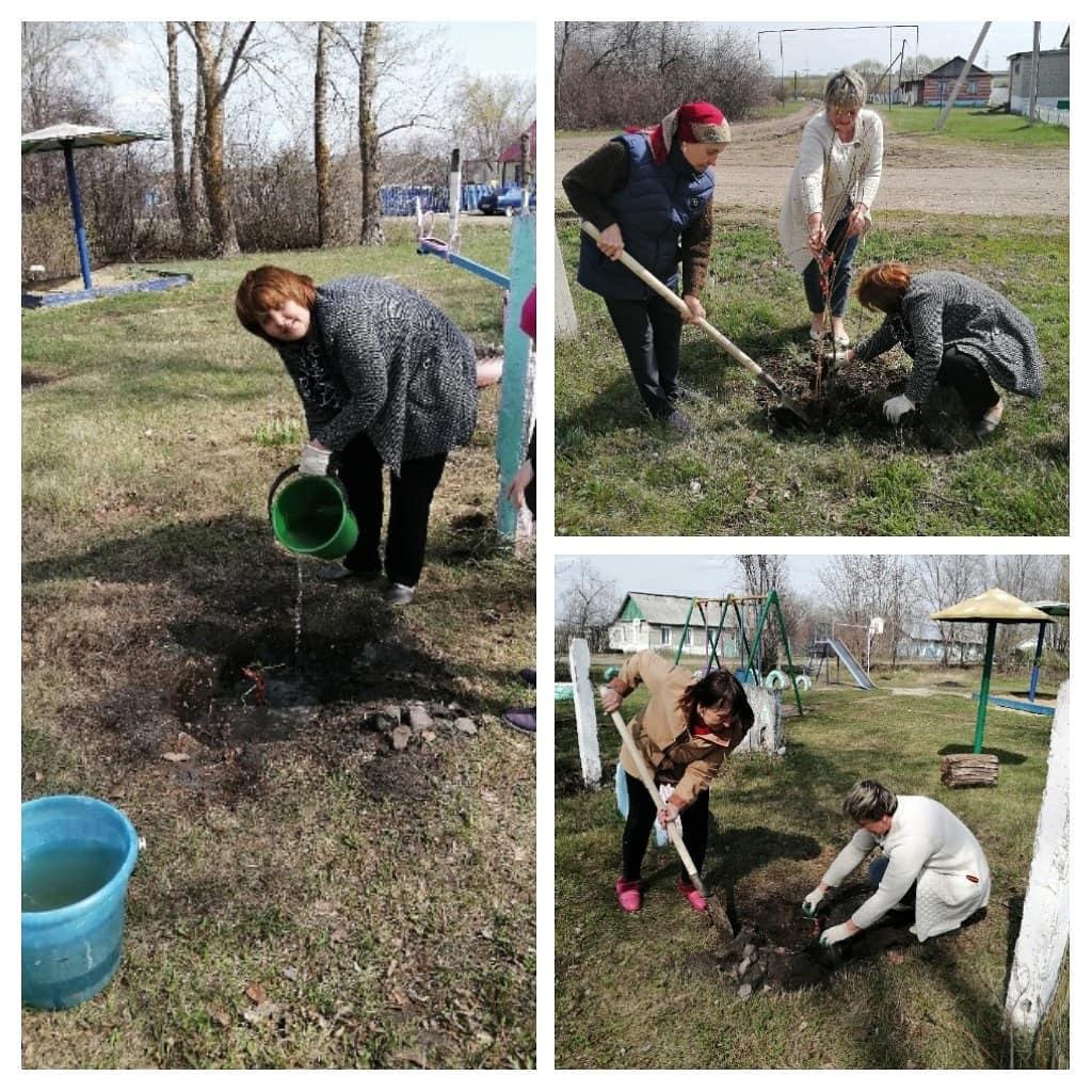 В первые майские дни жители сёл Асмётовка, Новозахаркино, Берёзовка, посёлков Мирный и Пригородный Петровского района присоединились к Международной акции «Сад Памяти»