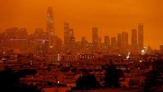 Целые города сожжены дотла, массовые смерти и всеобщая эвакуация. Катастрофа в США