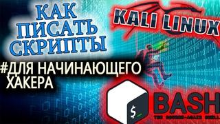 Основы написания сценариев для начинающего хакера. Kali Linux. Часть 1