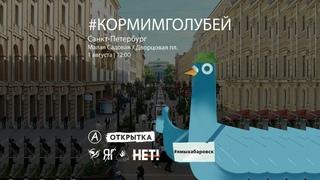 В Санкт-Петербурге полиция не дает кормить голубей за это задерживает мирных людей.
