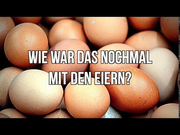 Warum Eier ein Nofood sind
