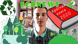 #ЭКОНОВОСТИ / Лукашенко за экологию / Красная книга РФ 2020 / Раздельный мусор в один мусоровоз
