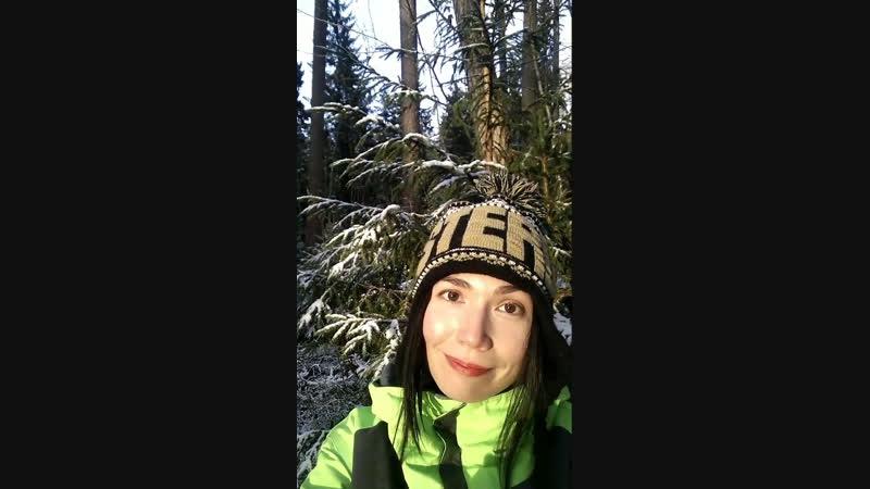 Первый снег в Линдуловской роще D