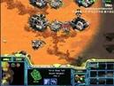 Bisu vs Sea PvT Starcraft Brood War FPVOD