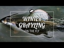 WINTER GRAYLING RIVER CLYDE FlY FISHING