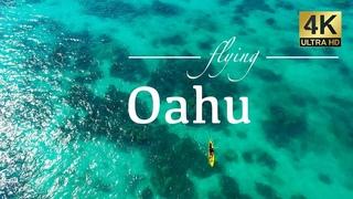 Oahu Hawaii By Drone - Kailua, Honolulu, Chinamans Hat, Diamond Head, & Lanikai