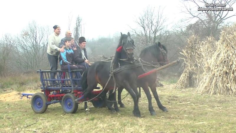 Dorati u selu Sipulja Obicaji Radjevine Dobrivoje i Dobrila Pantelic