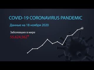 Коронавирус. Информация на 18 ноября