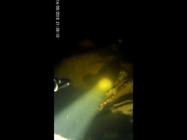 Подводная охота. Сом. Прозрак. Коряги.