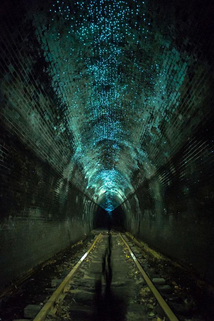 Волшебный тоннель