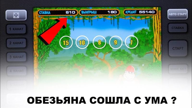 Обезьяна сошла с ума Игровые автоматы НЕ казино Вулкан