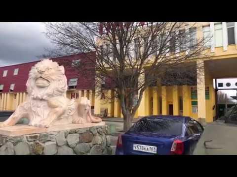 Обзор парка Эфир из Парка Львов Тайган Звери без хозяина скучают